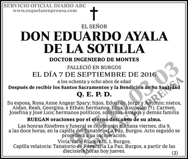 Eduardo Ayala de la Sotilla